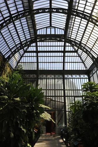 Rog01 Jardin des Plantes - Paris CC BY-SA 2.0